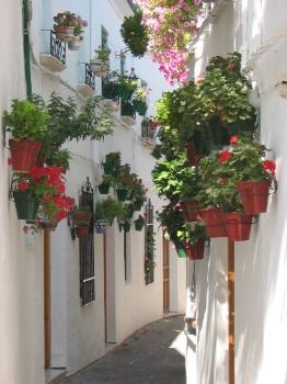 terrazze e balconi balconi e davanzali piccoli spazi in espansione